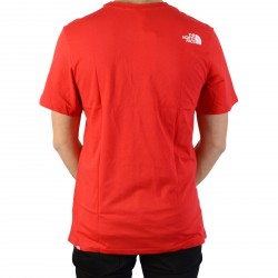 Tee-Shirt North Face Easy Tee