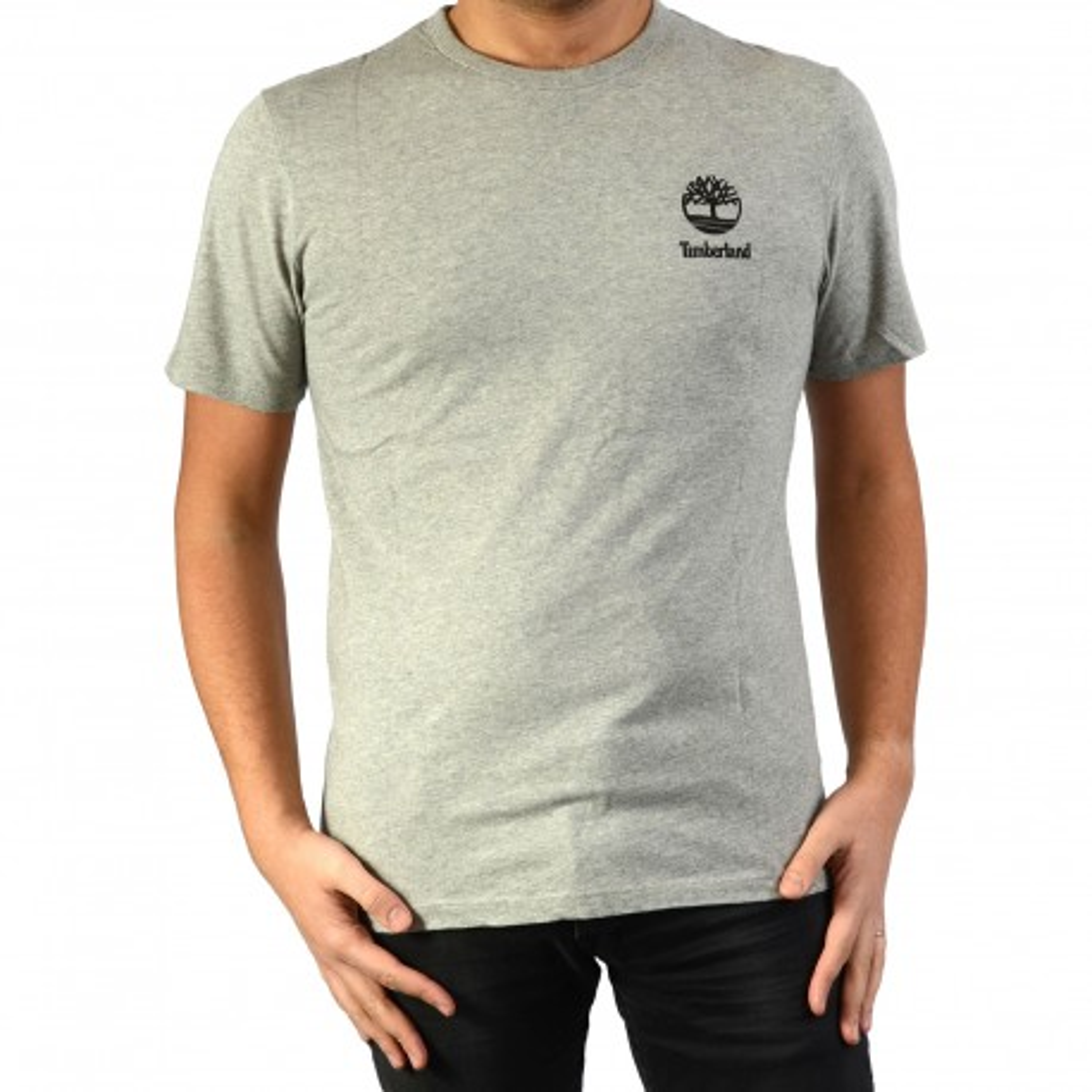 Tee Shirt Timberland SS Box Logo GR