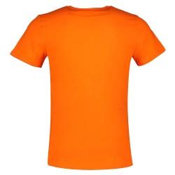 Tee Shirt Superdry Collegiate Graphic